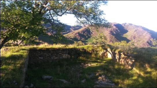 Dinas Emrys Sacred Site North Wales