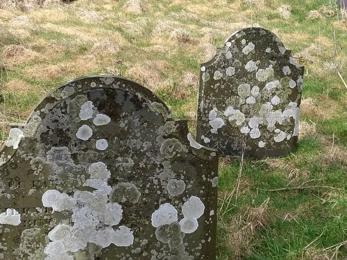 Beautifully Aged Tombstones